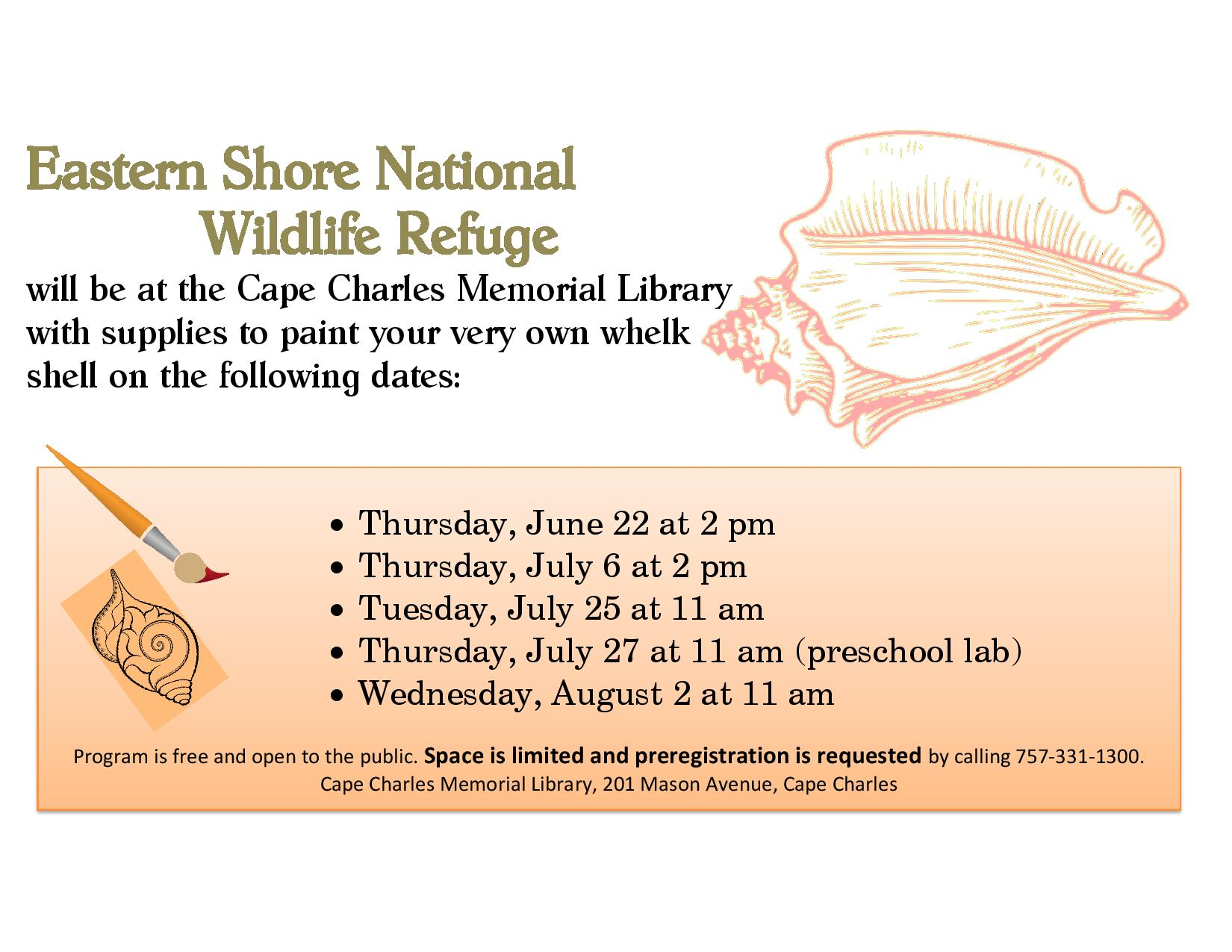 Whelk Shell Painting with ES National Wildlife Refuge
