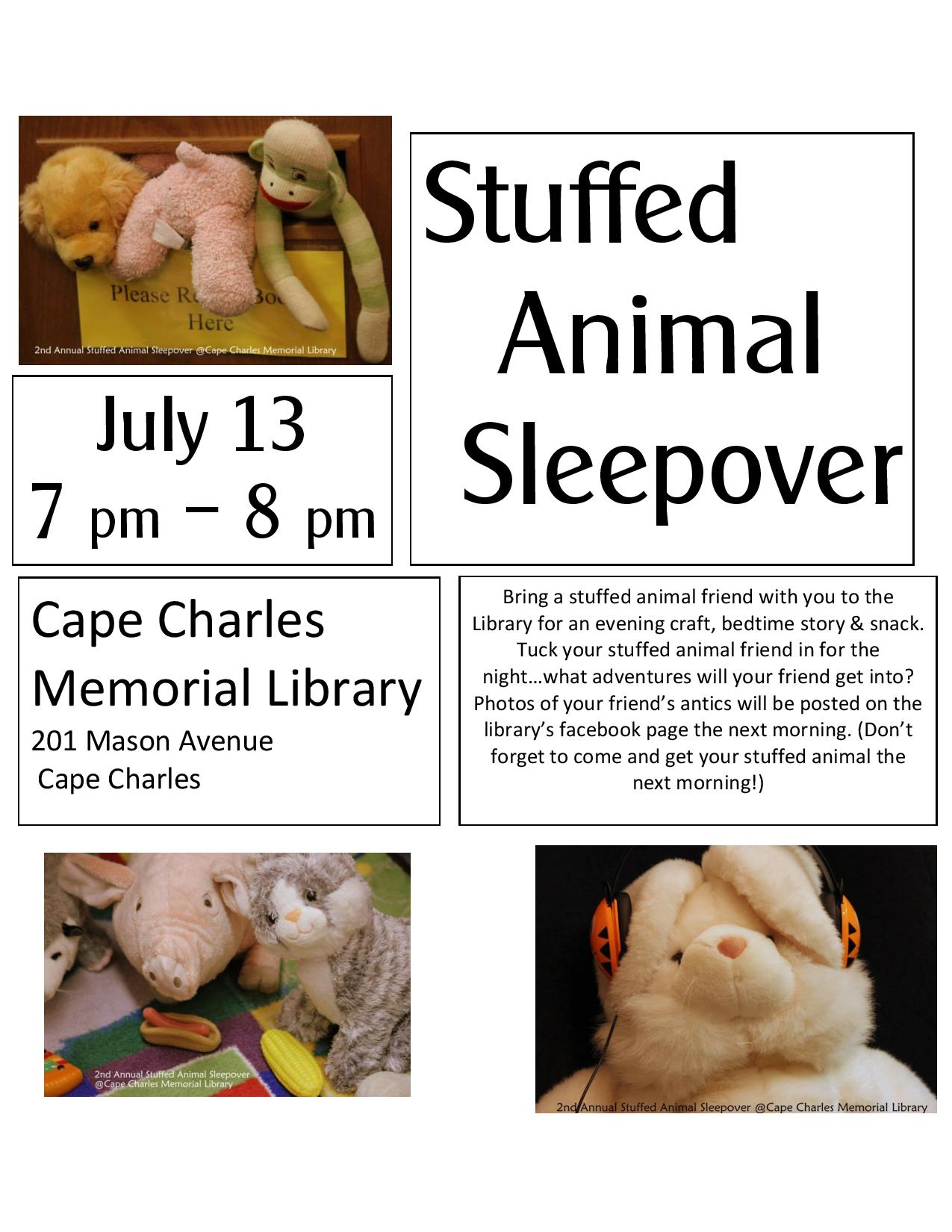 Stuffed Animal Sleepover @ Cape Charles Memorial Library